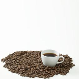 美味しい コーヒー の 入れ 方